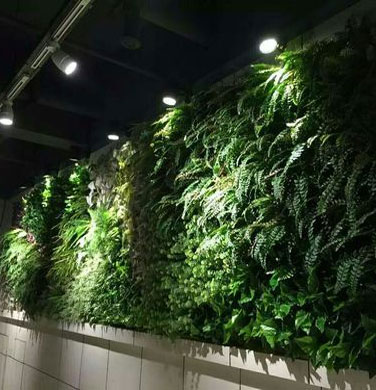 Artificial Greenwall