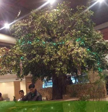 Big Artificial Tree