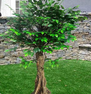 Ficus Artificial Trees