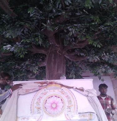 Artificial Tree For Jain Mandir