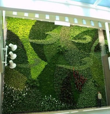 Green Wall For Outdoor And Indoor