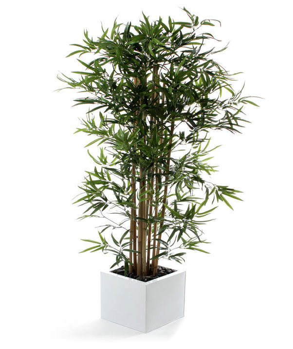 Small Artificial Trees